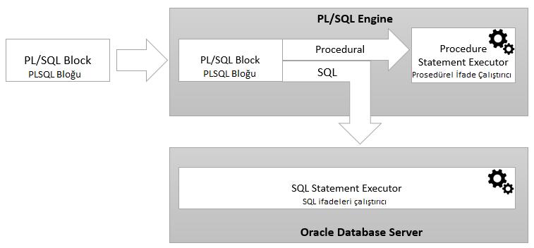 PLSQL Nedir, Oracle PLSQL Hakkında