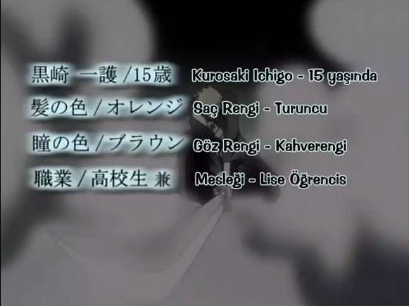 En iyi animeler listesi | Bleach